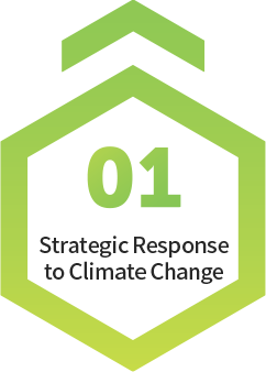 Strategic Response to Climate Change